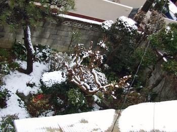 佐倉入院 09401.jpg