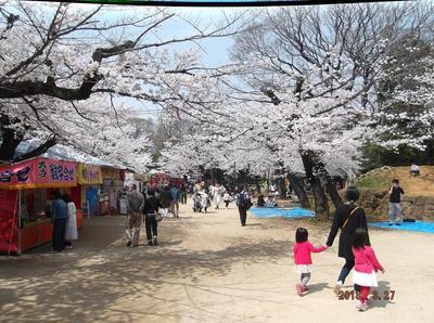 千葉公園 01701.jpg