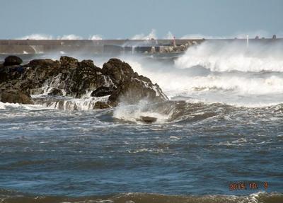 鵜の岬 06001.jpg